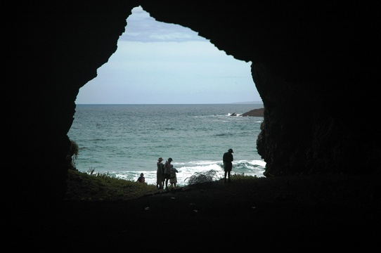 point of human origins, POHO, human origins tour, human origins mossel bay, guided walk mossel bay