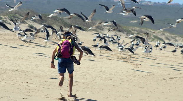 Hiker running birds.
