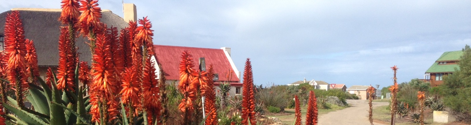 self-catering mossel bay, accommodation mossel bay. sandpiper cottages mossel bay, beach accommodation mossel bay